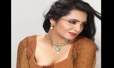 Arshi Khan Bigg Boss 9 Contestants