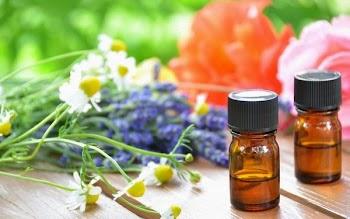 Το top-5 από ιαματικά βότανα που επιβάλλεται να έχετε στο σπίτι