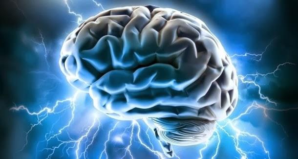 10 alimentos que reduzem o risco de Alzheimer