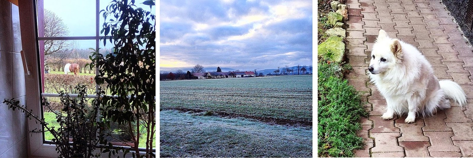 Czech Republic in winter