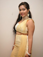 Actress Mithra photos DMV audio launch-cover-photo
