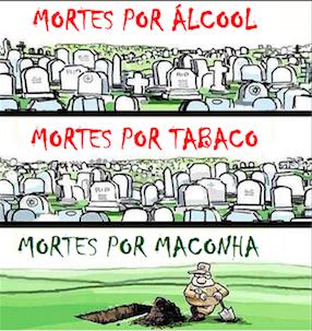 MACONHA NÃO MATA