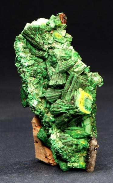 Torbernite from Margabal mine, Aveyron, Midi-Pyrenees, France.