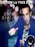 Cheb Djalil-Rani M'Choque 2015