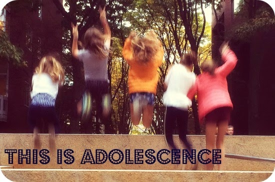 Adolescent Development and Education
