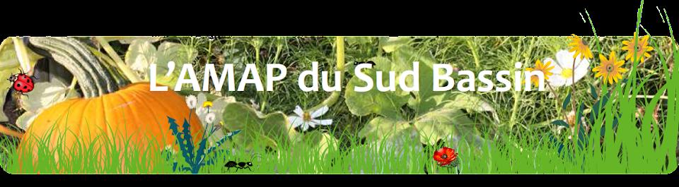 NOUVEAU SITE DE  L'AMAP DU SUD BASSIN