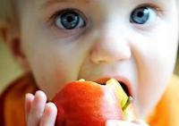 Porque meu filho é vegetariano?