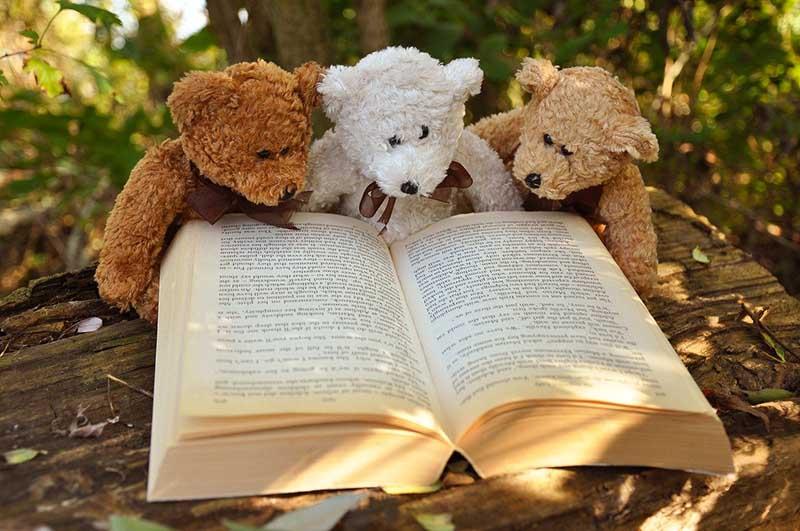 Creating Custom Children Books