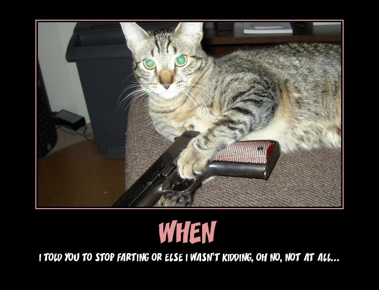 Cat Fart Meme