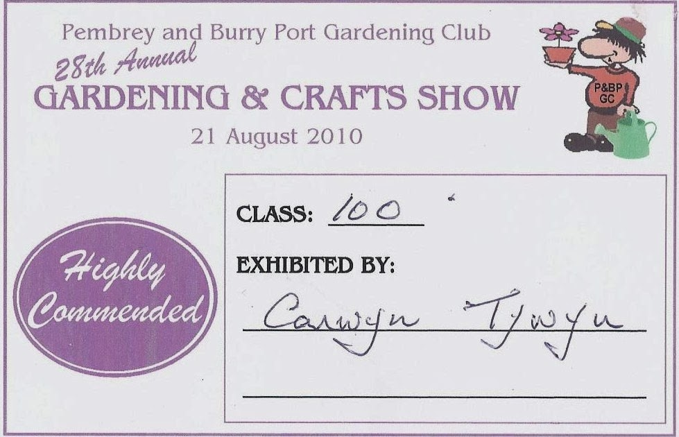 Pembrey & Burry Port Show 2010: Photography