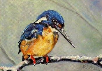 Azure Kingfisher, bird in oils on canvas