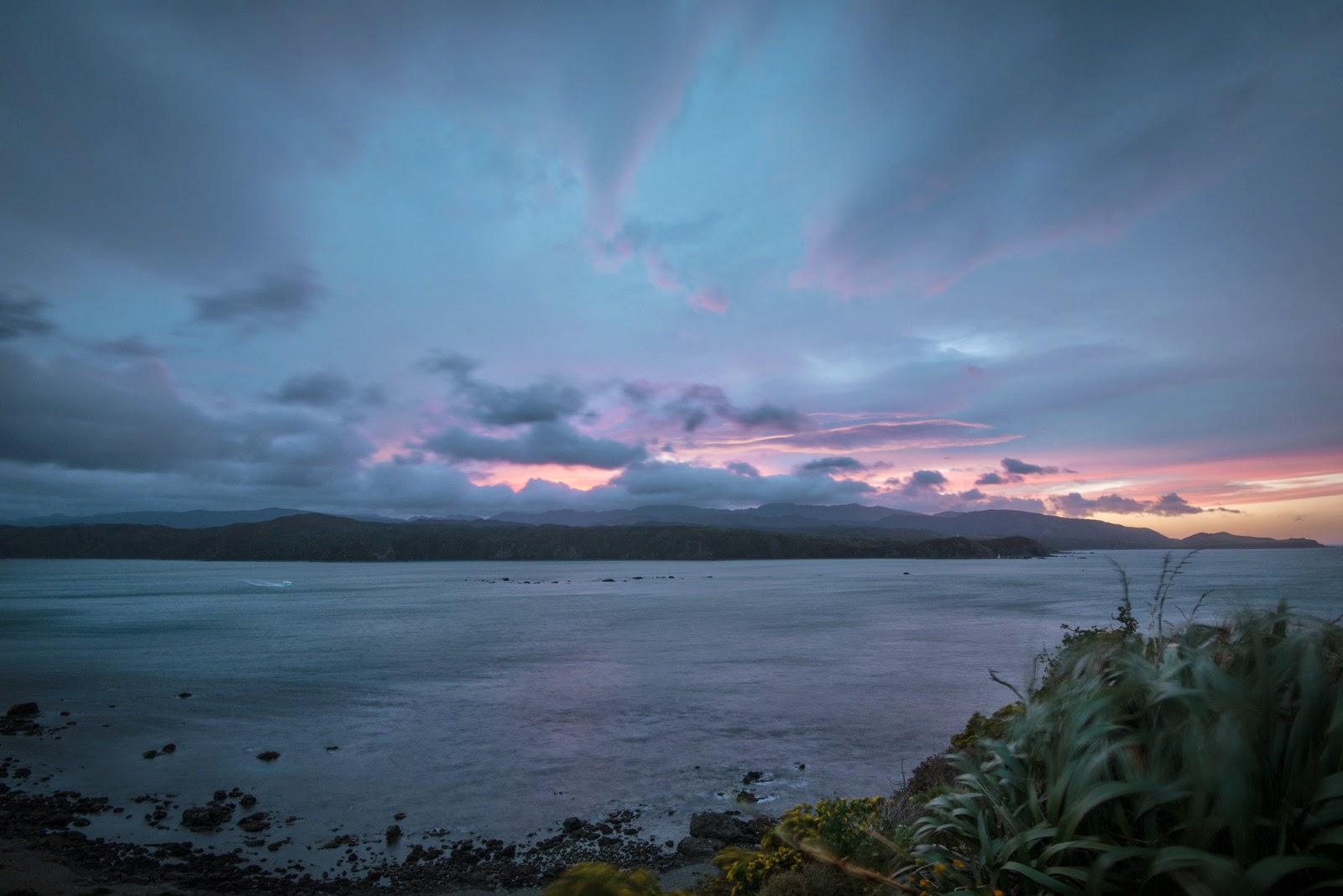 Pink skies in Wellington harbour towards eastbourne