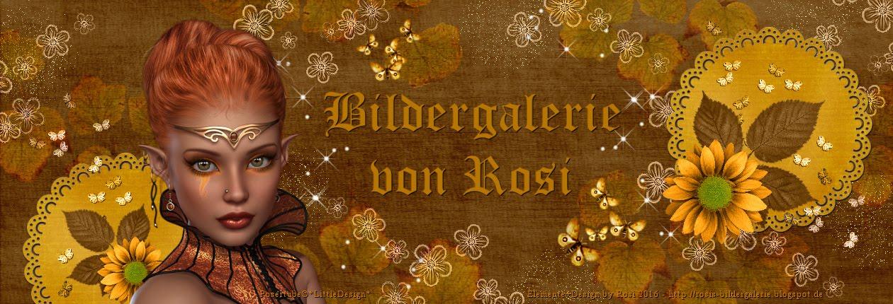 Bildergalerie von Rosi