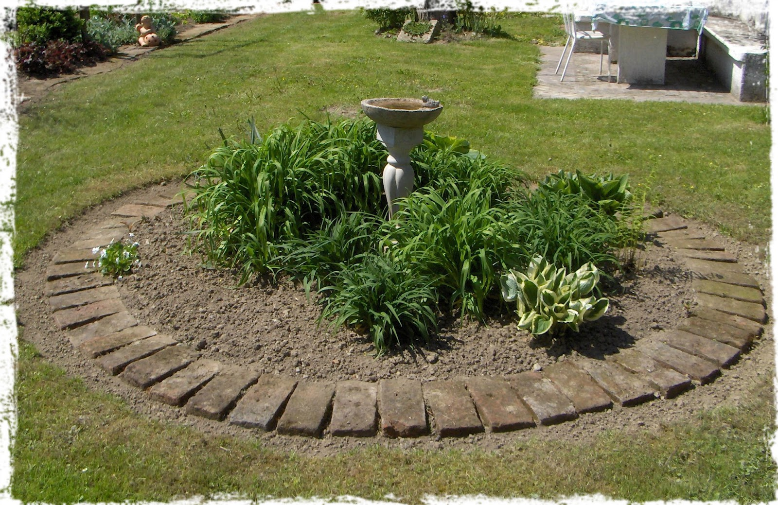 Round Flower Bed : This round flower bed misses the Houttuynia which still did not came ...