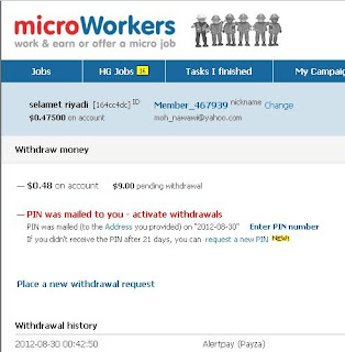 pin microworkers