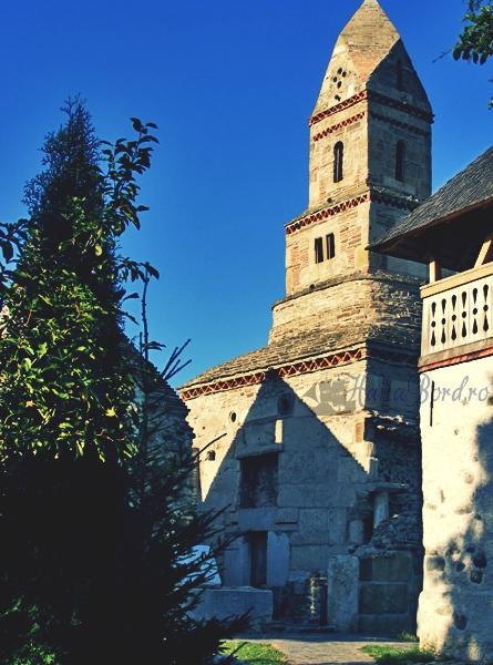 biserica densus 2008