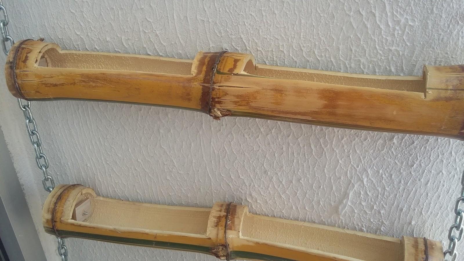 Bambú (ganhamos de um vizinho da igreja hahaha) cortados na medida  #90673A 1600x900