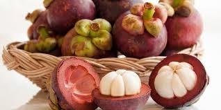 Manfaat kulit buah manggis bagi tubuh