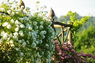 http://www.ladepeche.fr/article/2013/05/21/1630991-thermes-magnoac-le-jardin-remarquable-hillen-bientot-sur-france-2.html
