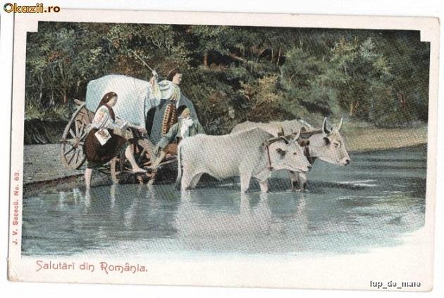 car cu boi romania 1900