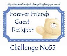 Gast designer 11 februari 2012