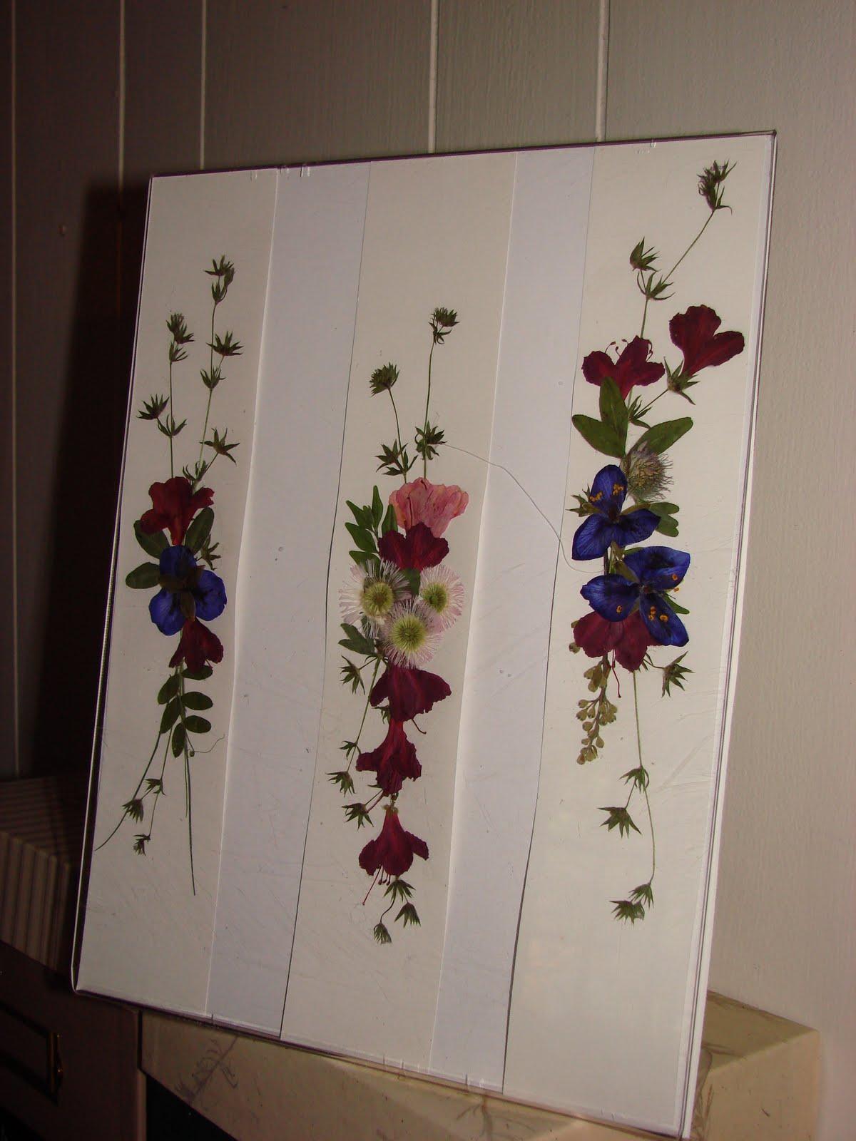Pressed Flower Beautiful Flowers