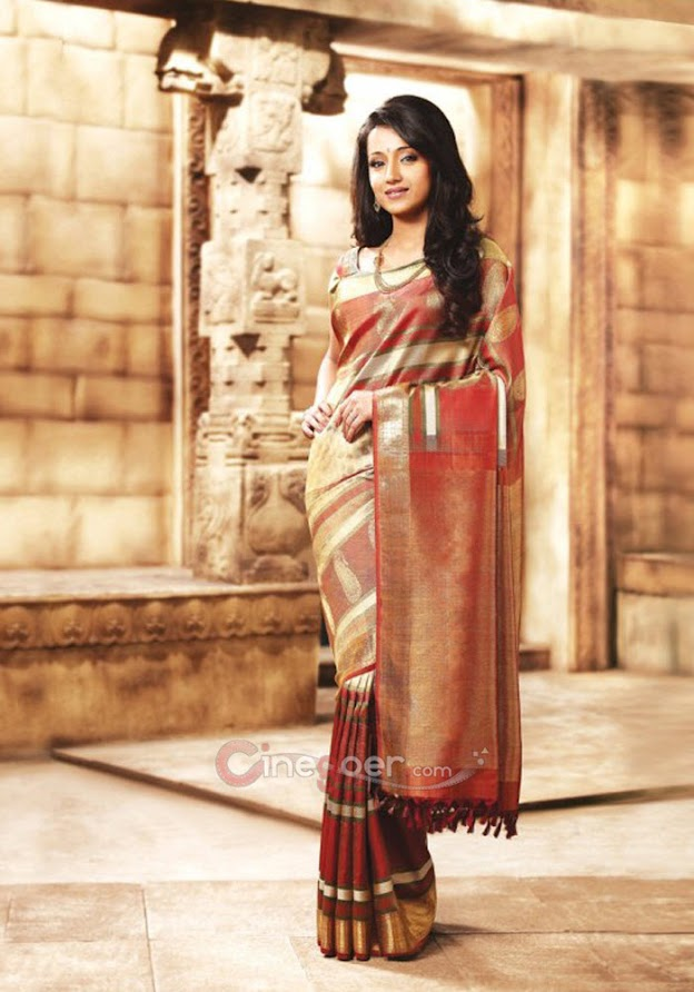 Trisha in silk saree - (5) -  Trisha Samudrika Pattu Pothys Silk Saree PhotoShoot Pics