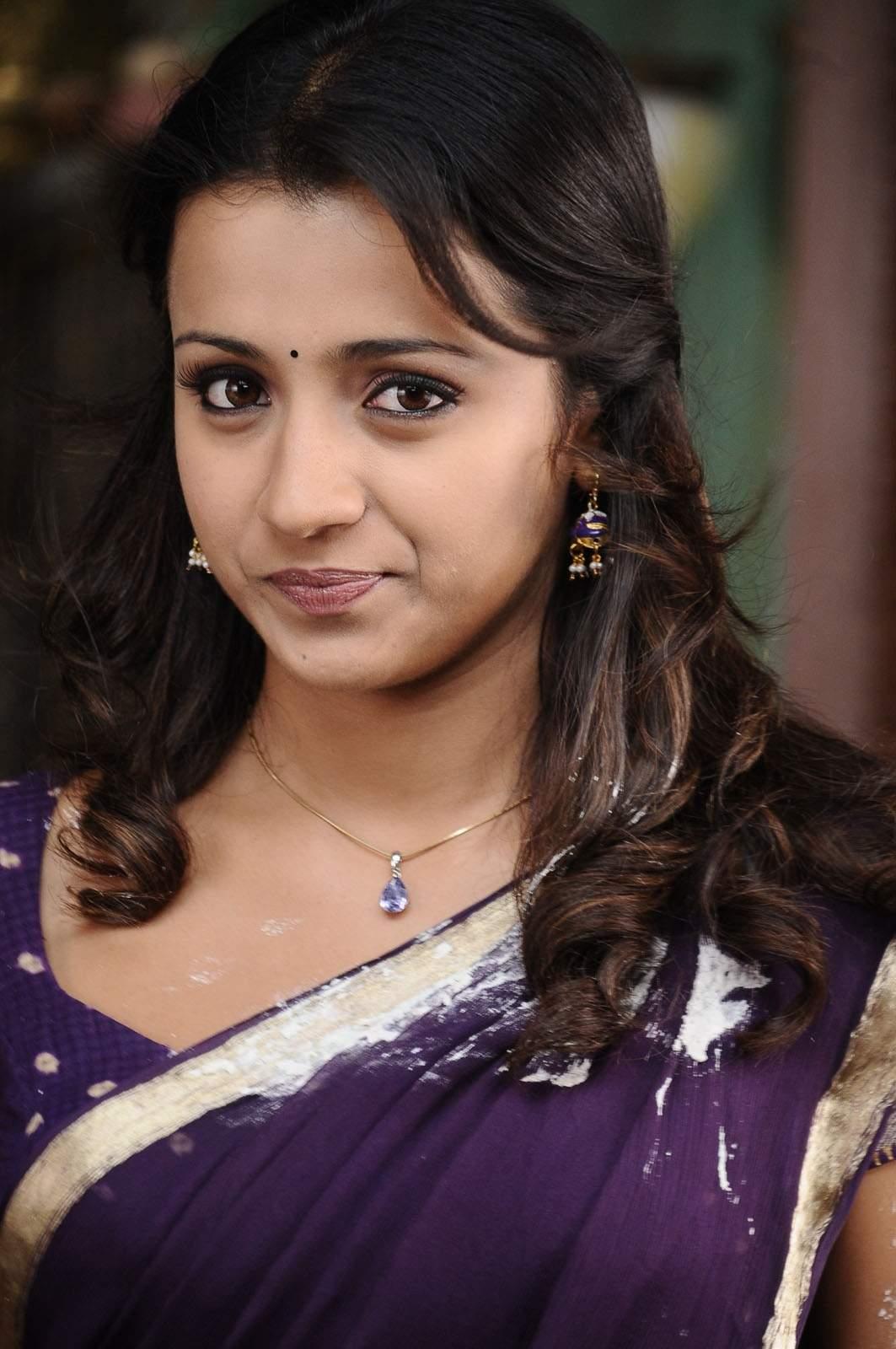 Trisha Cute In Violet Saree Actress Gallery