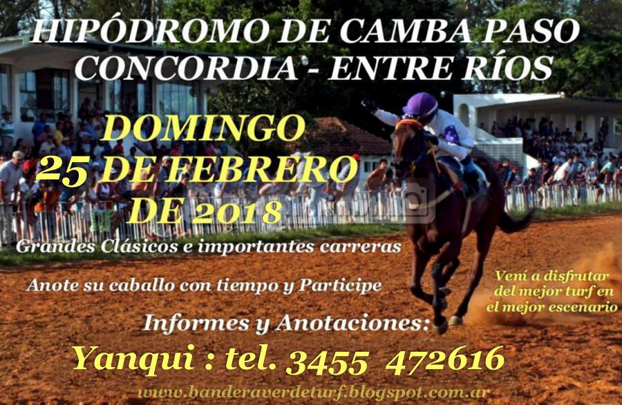 CAMBA PASO DOMINGO 25