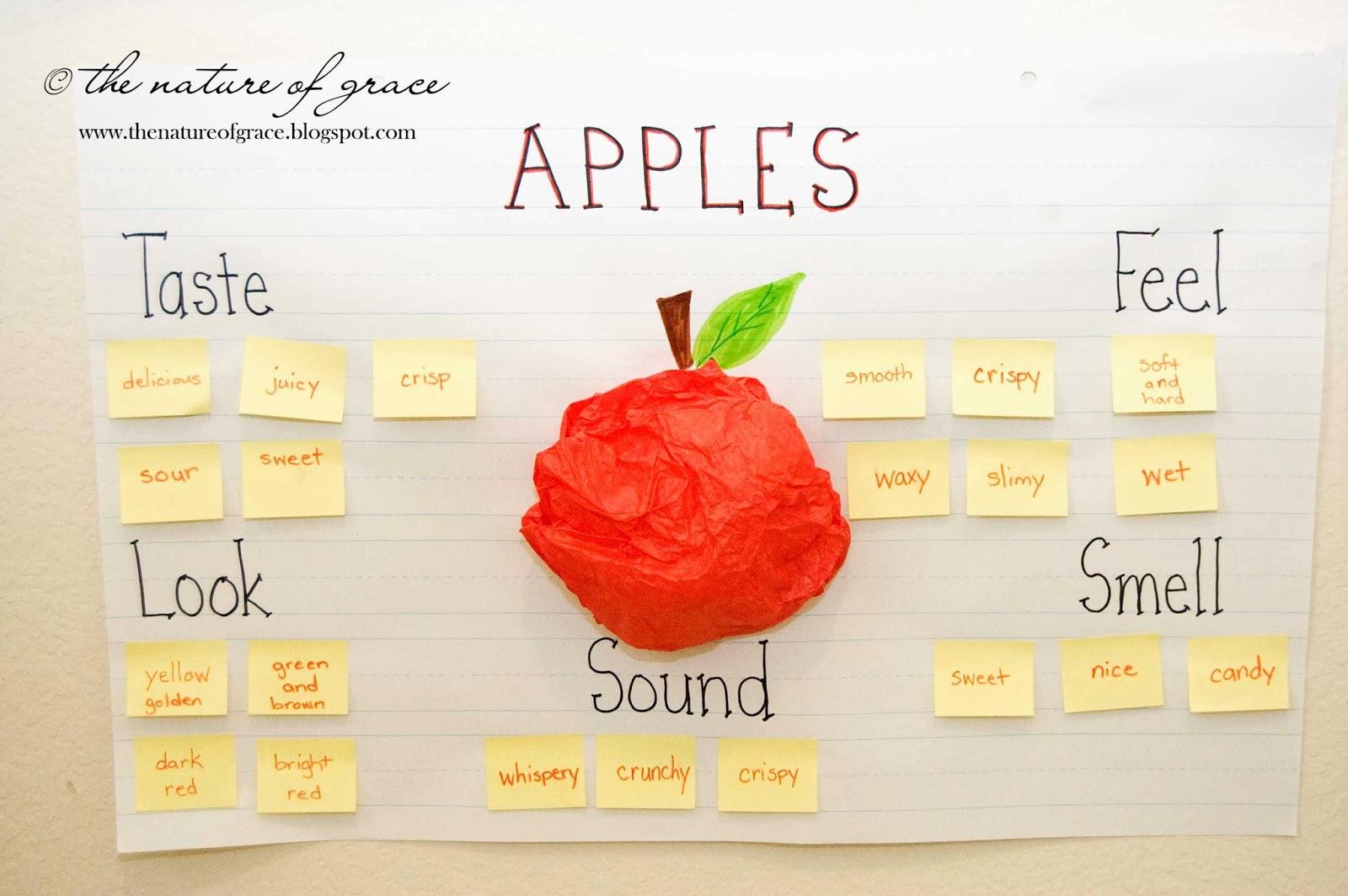 Preschool Apple Chart