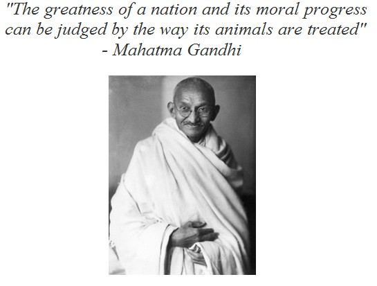 mohandas gandhi a moral economic progress Essay express examples of essays and research papers on many topics :: gandhi's economic and moral progress: is he right or wrong [12854.