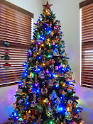 CHRISTMAS TREES 2014 -Click On Photo
