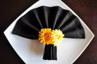 Fan Napkin Folding Example #1