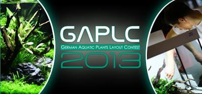 GAPLC 2013