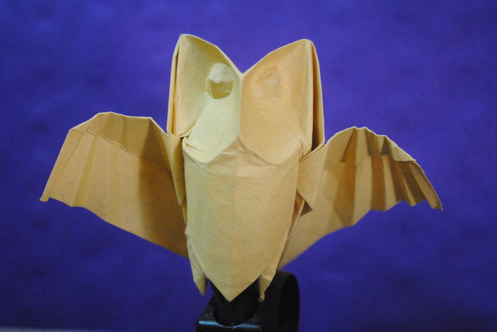 The Art Of Folding Origami Owls