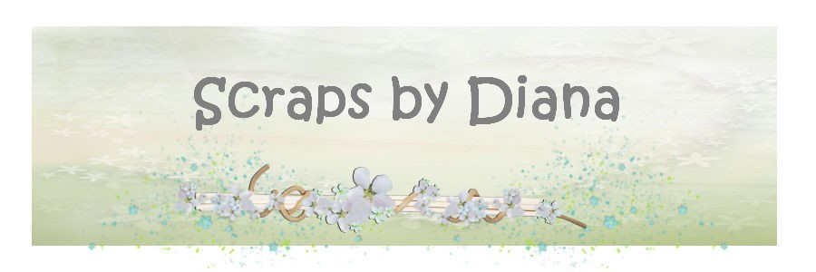 Scraps by Diana