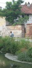 Pescatore di rane a Busonengo