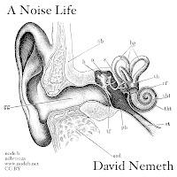 David Nemeth - A Noise Life