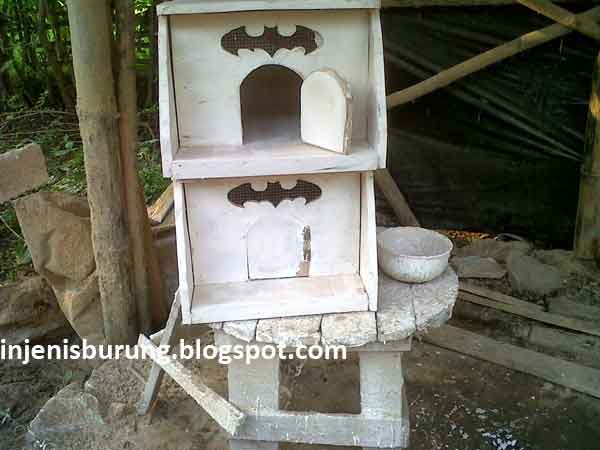 Model Kandang Merpati Rumahan - Cara Membuat Kandang Burung Merpati Cantik