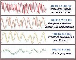 Los efectos del magnetismo en los seres humanos Imagesopoi
