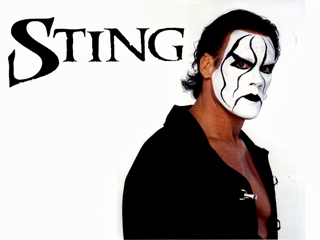 Sting Hd Wallpapers Free Download