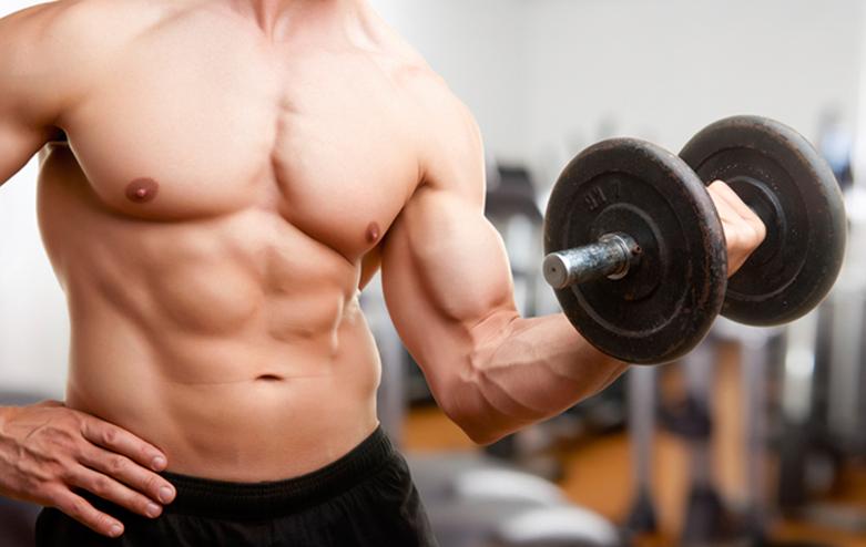 latihan beban weight training