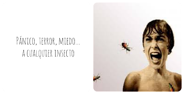No me gustan los insectos