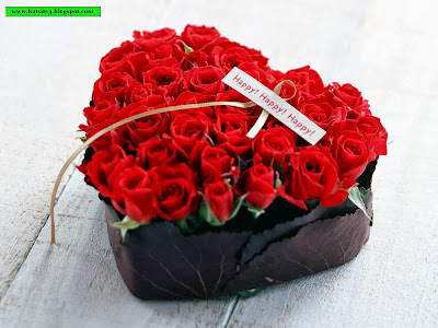 Red Rose Gift For Your GirlFriends 2014