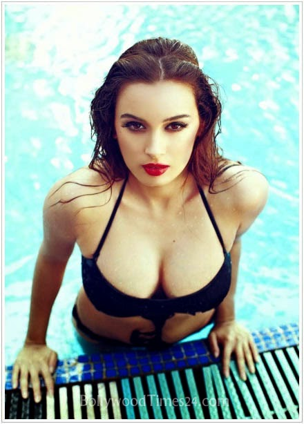 Evelyn Sharma New Hottest Bikini Photos,Pics,Photoshoots