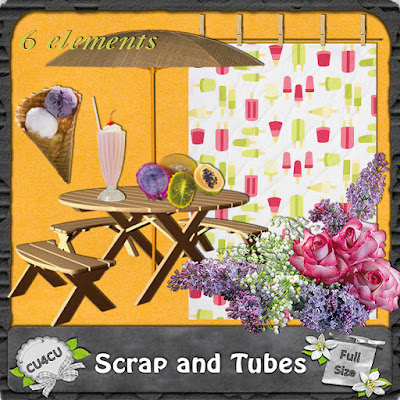 Summer Elements (CU4CU) .Summer+Elements+1_Preview_Scrap+and+Tubes