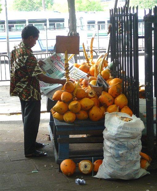 King coconuts at the market - Colombo (Sri Lanka)