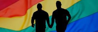 Parteneriat civil pentru cuplurile homosexuale. Renate Weber: Acum e momentul să-l adoptăm repede