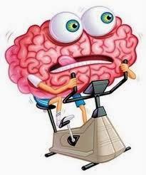 cérebro de obeso