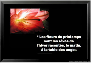 Citation printemps en image